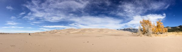 Beautiful day, as most are, at the sand dunes!