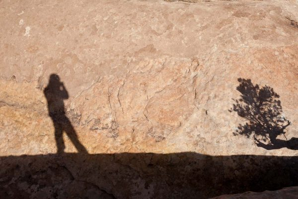 Shadow selfie with tree, Muley Point, Utah