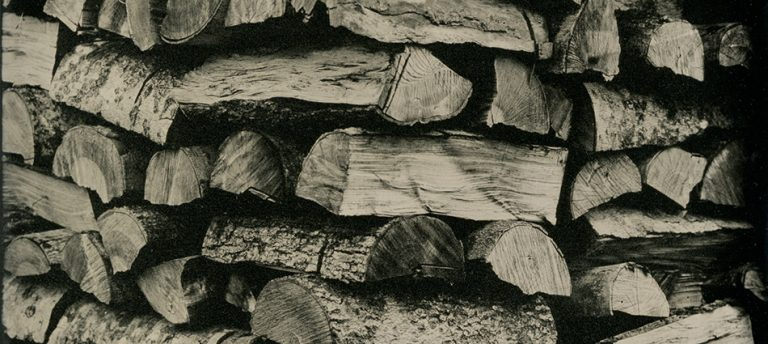 John's Woodpile